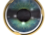3D-Animation: Pupille